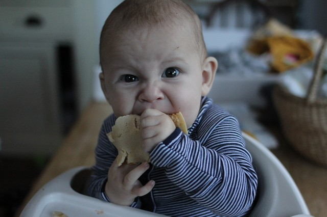 how to start baby led weaning hollygoeslightly